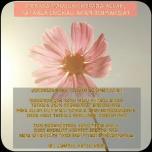 PhotoGrid_1439213807891